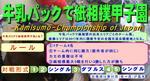 甲子園ルール1.JPG