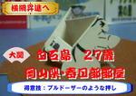 白石島横綱昇進へ.JPG