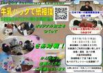 kamisumoosakaA4.JPG